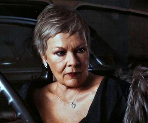 Judi Dench Screensaver Sample Picture 2